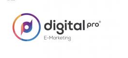 digital pro logo