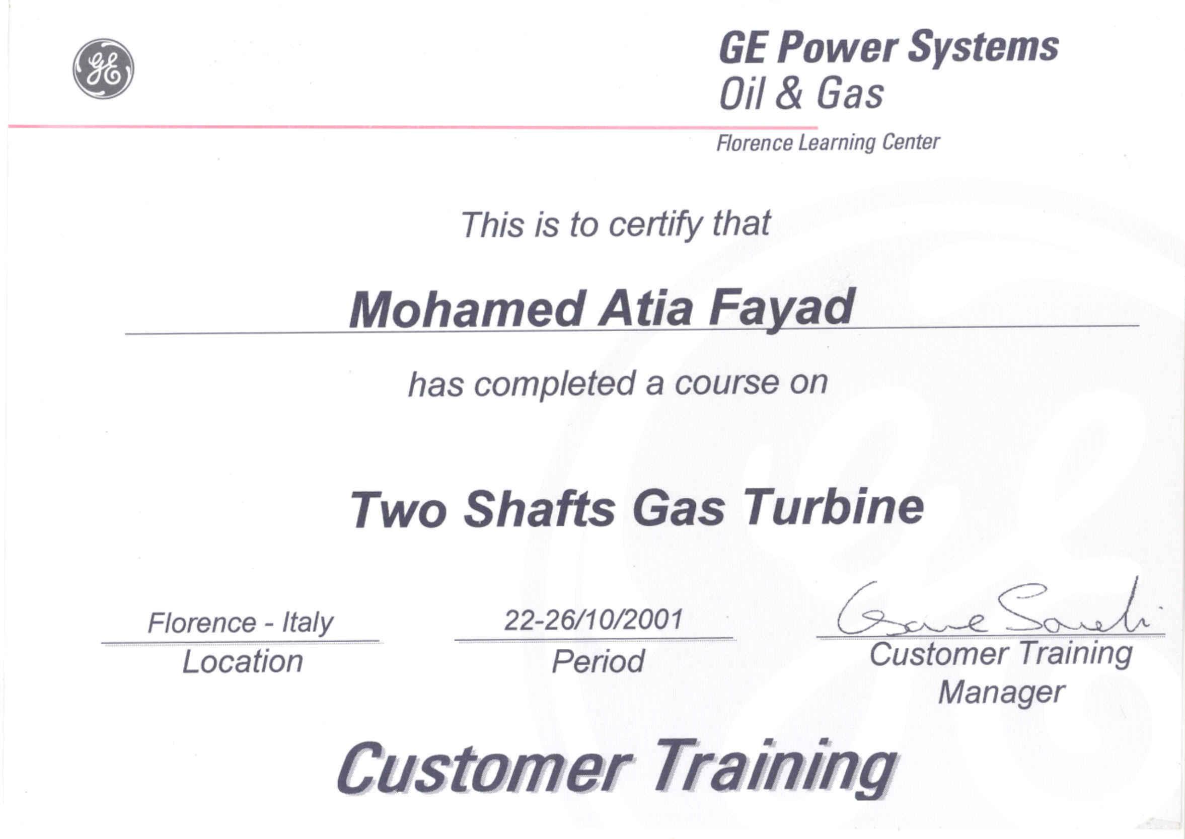 Mohamed Atia Fayad Bayt