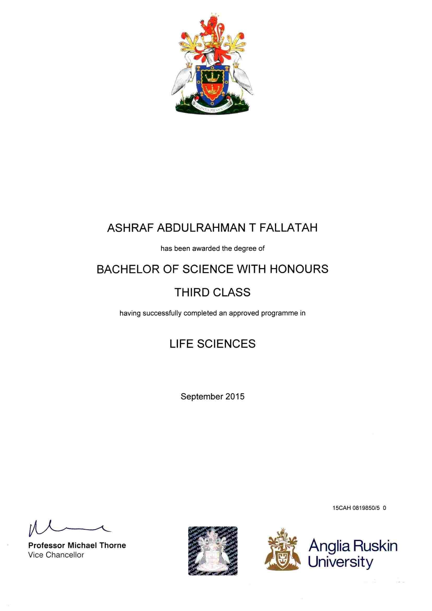 bachelor degree classification