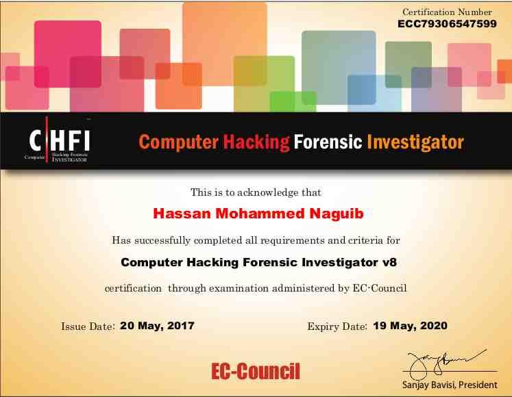 Hassan Naguib - Bayt.com