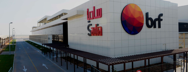 saudi arabia u0026 39 s leading job site